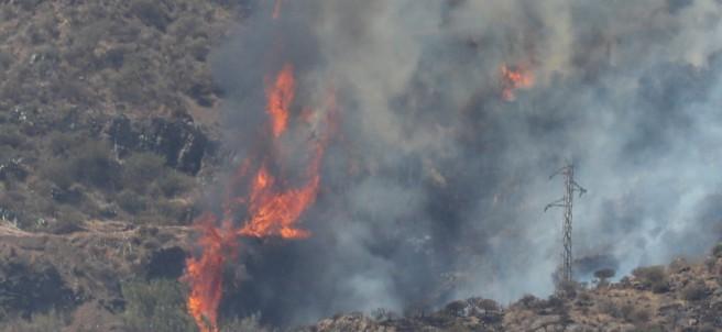 Vista de uno de los focos del incendio de Gran Canaria.