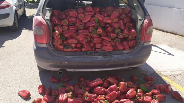Pimientos rojos asados incautados.