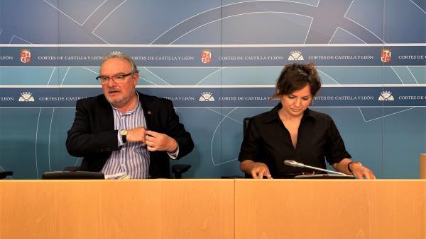 El coordinador de Hacienda del PSCyL, José Francisco Martín, y la secretaria general del Grupo Parlamentario, Patricia Gómez, en una rueda de prensa sobre el impuesto a Garoña.