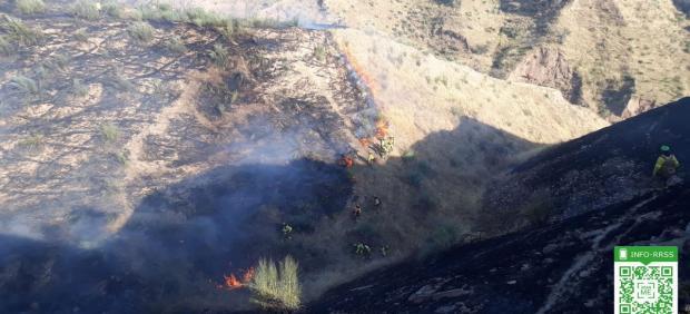 Efectivos del Infoca luchan contra las llamas en un cerro de Granada, en una imagen de archivo