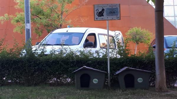 Casetas con gatos instaladas en el Bulevar.