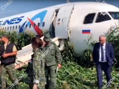 Un Airbus 321 aterrizó hoy de emergencia en un campo de maíz a las afueras de Moscú