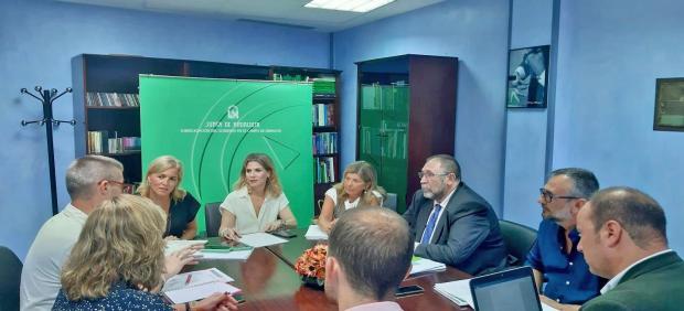 La delegada de la Junta de Andalucía en Cádiz, Ana Mestre, en una reunión de trabajo para hacer balance de la fase de ida de la OPE 2019