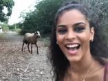 Selfie con una cabra