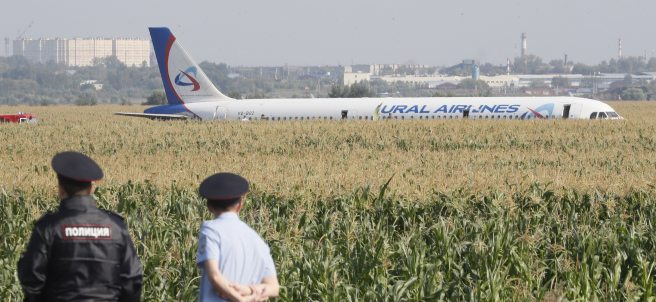 Un avión aterriza en un maizal