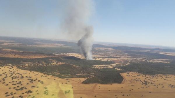 Incendio forestal originado en la localidad ciudadrealeña de Luciana