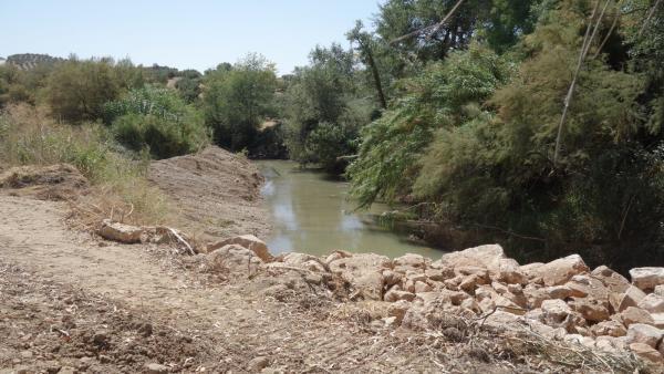 Río Salado en Luque