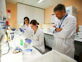 Investigadores del Vall d'Hebron identifican diana celular para atacar el reservorio del VIH