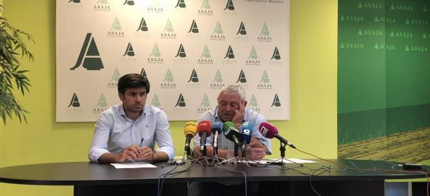 Asaja C-LM considera que cosecha de uva de este año será 'excepcional' y alcanzará dos grados de alcohol más que en 2018