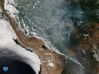 Fuegos en Amazonas