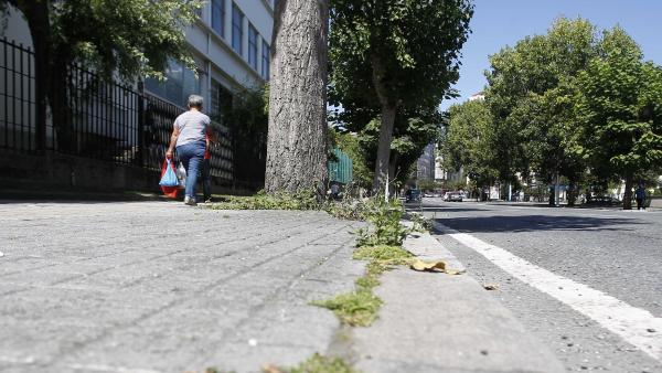 Presencia de malas hierbas en calles de A Coruña