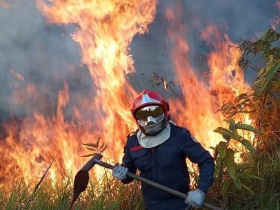 Incendios en la Amazonia