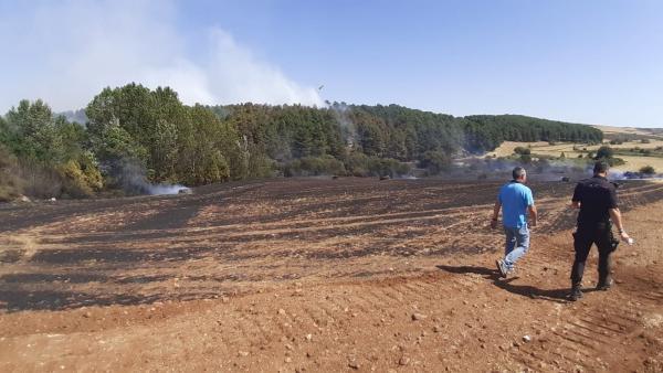 Incendio declarado en Fuente Dorada, en las cercanías de Burgos.
