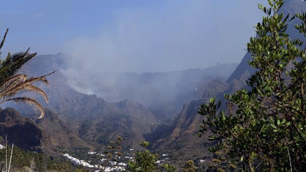 Parte de la zona afectada por el incendio de la isla de Gran Canaria