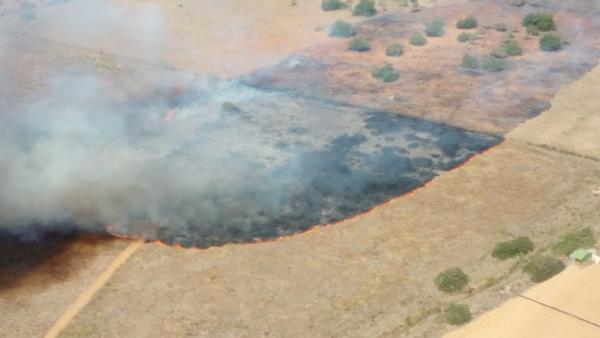 Fotografía aérea del incendio declarado en Sant Joan (Ibiza)