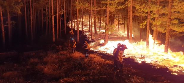 Incendio de Gran Canaria durante la pasada noche