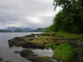 Bosque Nacional Tongass (Alaska)