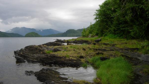 Bosque Nacional Tongass (Alaska)