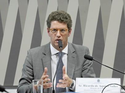 El ministro de Medio Ambiente de Brasil, Ricardo Salles.