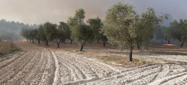 Incendio en Horta de Sant Joan
