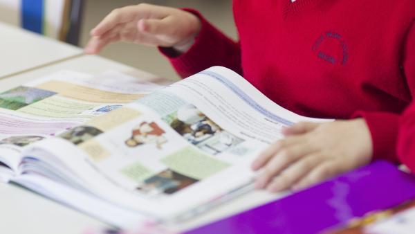En la imagen, un alumno de un colegio de la Comunidad de Madrid, donde se estrena este nuevo curso la gratuidad de libros de texto.