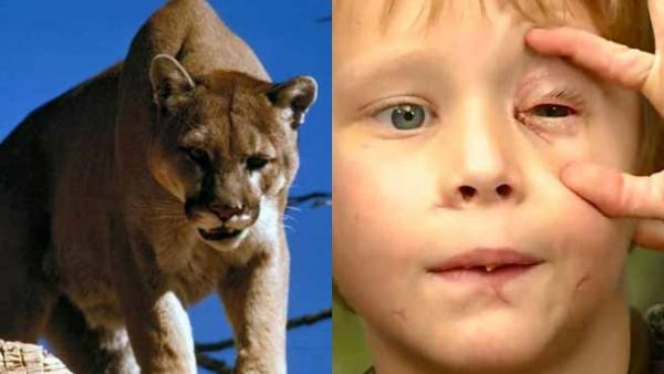 Imagen de Pike Carlson y un puma