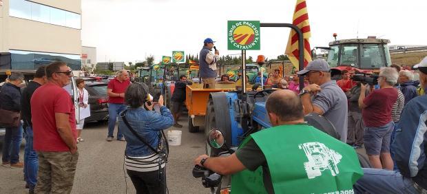 Un manifestante encima de un tractor en una marcha de Unió de Pagesos contra los bajos precios de la avellana