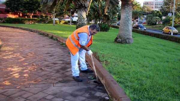 Un operario de parques y jardines en Santa Cruz de Tenerife