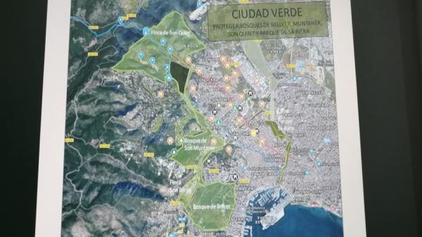 Mapa del Camino Real de Puigpunyent.