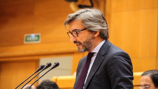 Iñaki Oyarzábal en el Pleno del Senado