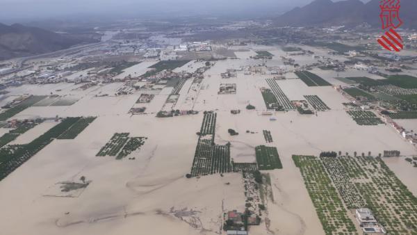 Inundaciones en Orihuela, campos anegados