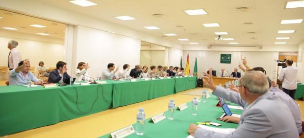 Pleno extraordinario de la Diputación de Sevilla