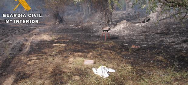 Incendio en Santa Cruz del Retamar