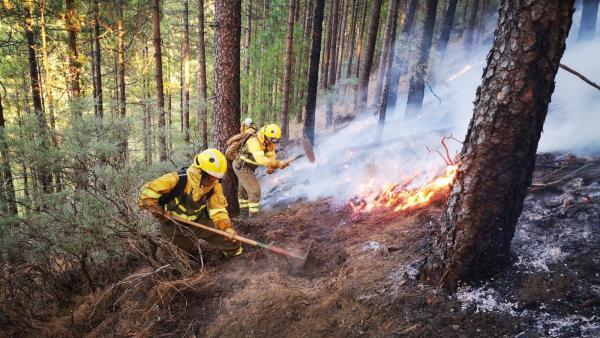 Efectivos de la BRIF de Puntagorda intervienen en las labores de extinción del incendio de Gran Canaria