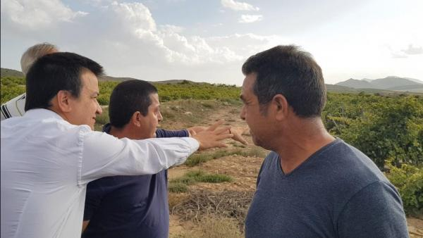 El consejero de Agricultura de C-LM, Francisco Martínez Guijarro, comprueba los daños de la gota fría en Fuente-Álamo.