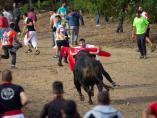 Festejo del Toro de la Vega