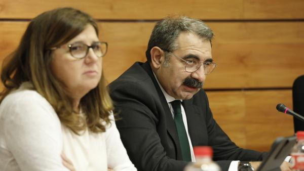 La directora del Sescam, Regina Leal, y el consejero de Sanidad, Jesús Fernández, en la Comisión de Sanidad de las Cortes.