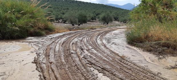 Camino afectado por las fuertes lluvias en Torres.