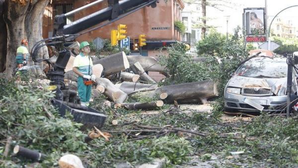 Imagen de los efectos del temporal Dana en la provincia de Málaga.