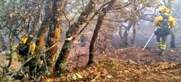 BRIF trabajan en los medios de extinción del incendio de Poyales del Hoyo (Ávila).