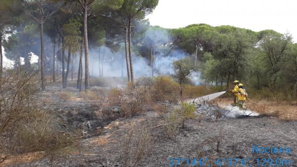 Imagen de un incendio declarado en el término municipal de Almonte (Huelva).