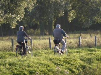 Dos ancianos en bicicleta