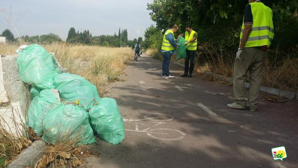 Militantes de IU en una jornada de limpieza