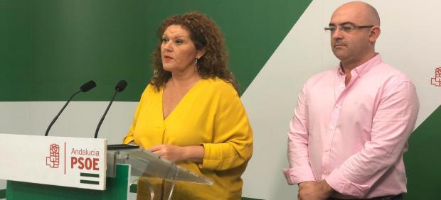 Araceli Maese en rueda de prensa en la sede del PSOE en Cádiz