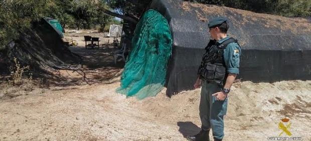 La Guardia Civil desarticula una organización que explotaba laboralmente  a víctimas de Rumanía y Moldavia en las campañas de recolección de cultivos