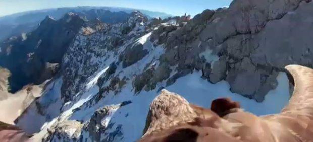 Un águila sobrevuela los Alpes