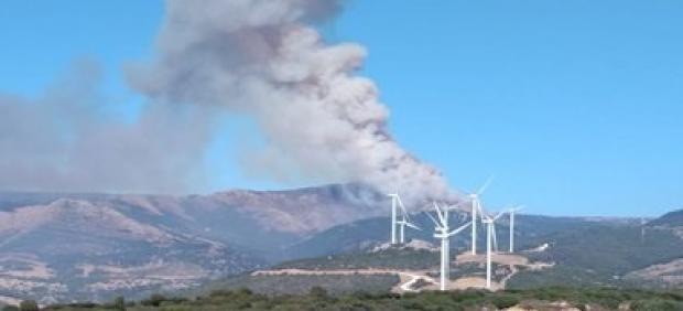 Incencdio declarado en el paraje Tajo de las Escobas en Tarifa
