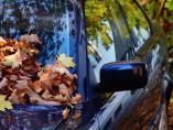 Siete claves para que tu coche afronte el otoño