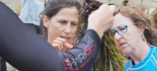 Adriana Vergés