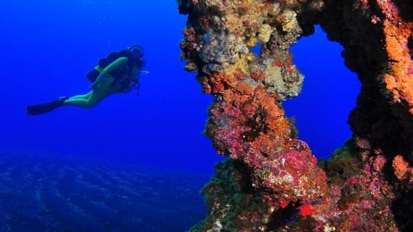 Levantan la restricción para bucear en la reserva marina del Mar de las Calmas en El Hierro